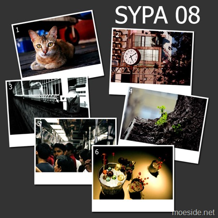 SYPA_08_overview